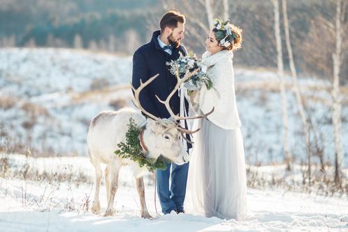 wesele zimą